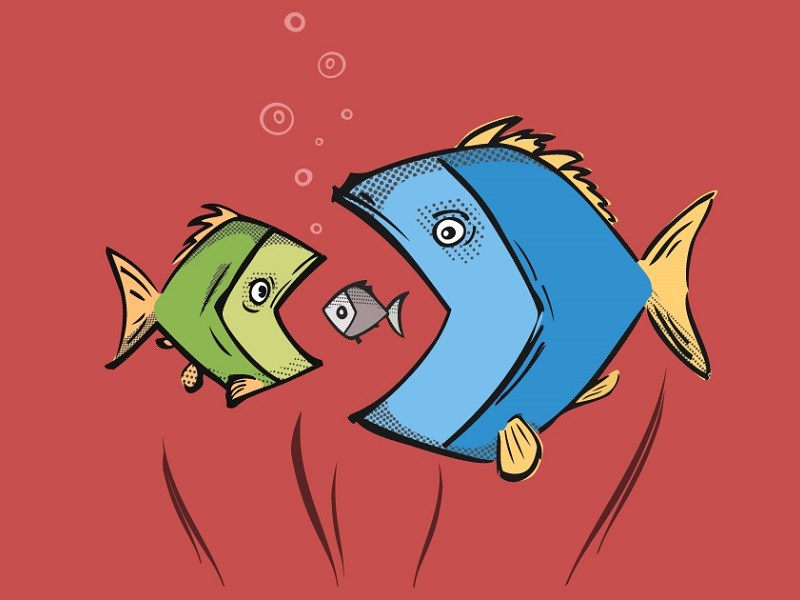 fish-in-fish
